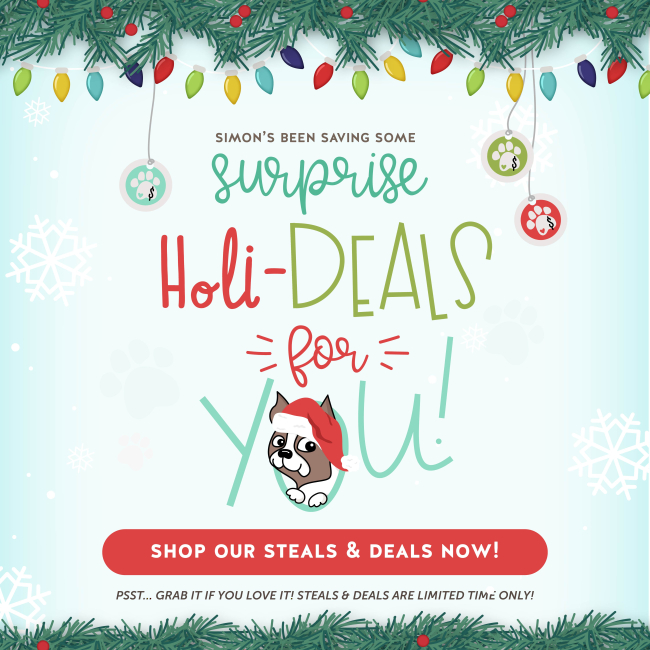 Holiday Steals  amp  Deals_1080-01