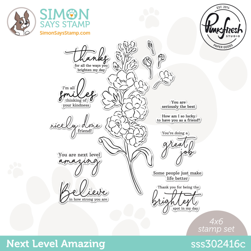 Sss302416c_NextLevelAmazing_Stamps_Store-Revised