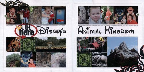 Animal Kingdom Layout